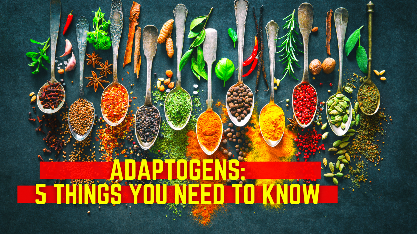 Adaptogens 5 Things You Need To Know
